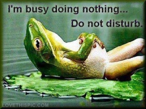 34095-Im-Busy-Doing-Nothing[1]